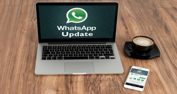 WhatsApp Business for companies updates