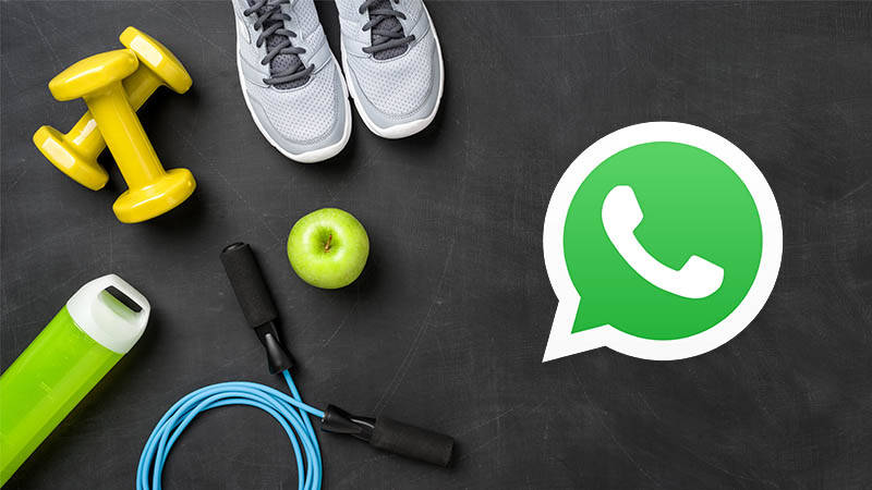 WhatsApp Business sport fitness