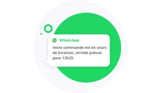 Whatsapp image alerte notification