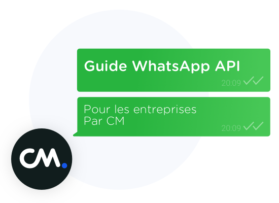 Guide whats app api